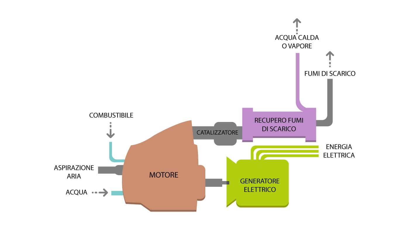 centrale-biomasse-schema
